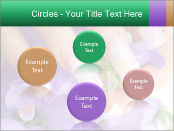 0000083756 PowerPoint Templates - Slide 77