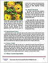0000083759 Word Template - Page 4