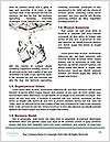 0000083761 Word Template - Page 4