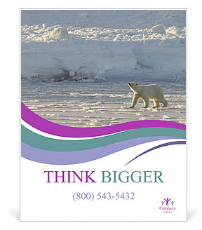 0000083762 Poster Templates