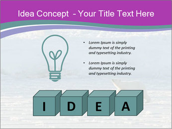 0000083762 PowerPoint Template - Slide 80