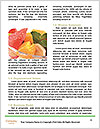 0000083764 Word Templates - Page 4