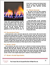 0000083767 Word Template - Page 4