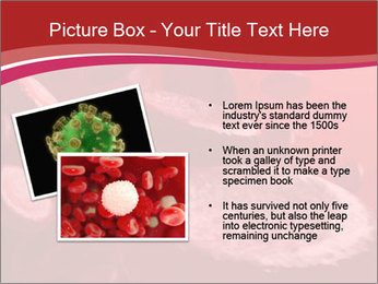 0000083771 PowerPoint Template - Slide 20