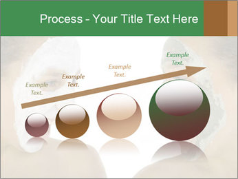0000083775 PowerPoint Template - Slide 87