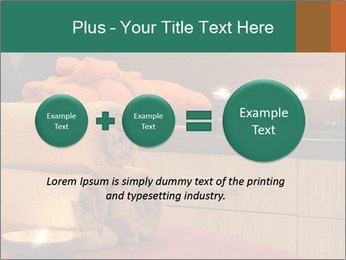0000083777 PowerPoint Template - Slide 75