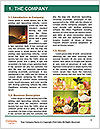 0000083777 Word Template - Page 3