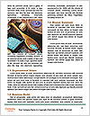 0000083777 Word Template - Page 4