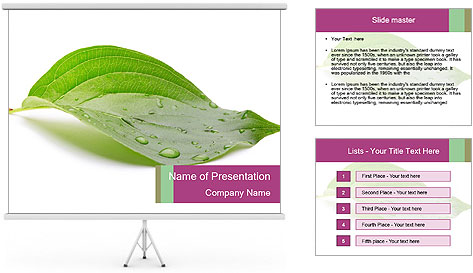 0000083778 PowerPoint Template