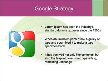0000083778 PowerPoint Templates - Slide 10