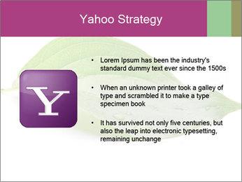 0000083778 PowerPoint Templates - Slide 11