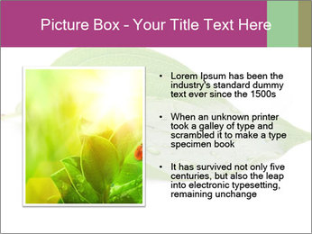 0000083778 PowerPoint Template - Slide 13