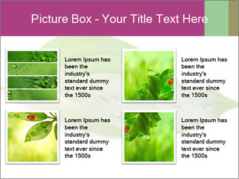 0000083778 PowerPoint Template - Slide 14