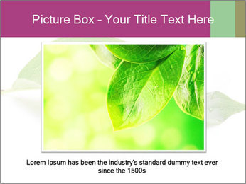 0000083778 PowerPoint Template - Slide 16
