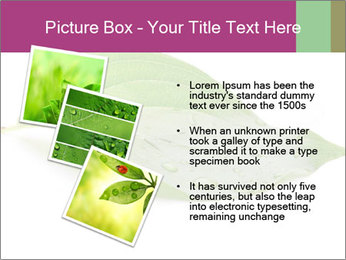 0000083778 PowerPoint Template - Slide 17