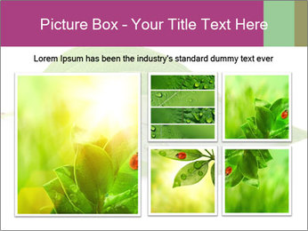 0000083778 PowerPoint Template - Slide 19