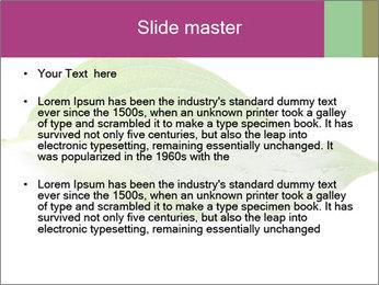 0000083778 PowerPoint Templates - Slide 2