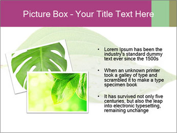 0000083778 PowerPoint Template - Slide 20