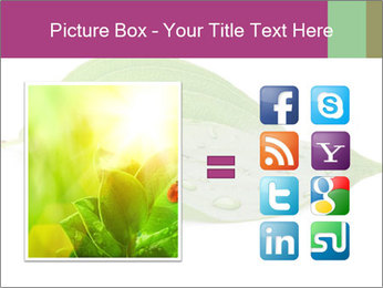 0000083778 PowerPoint Template - Slide 21