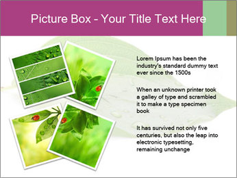 0000083778 PowerPoint Template - Slide 23