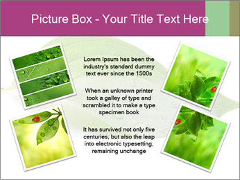 0000083778 PowerPoint Template - Slide 24