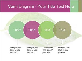 0000083778 PowerPoint Templates - Slide 32