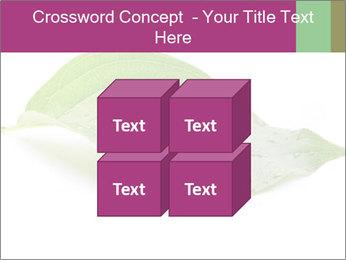 0000083778 PowerPoint Templates - Slide 39