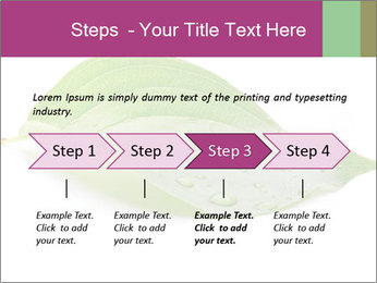 0000083778 PowerPoint Template - Slide 4