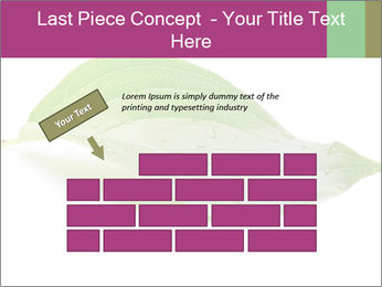 0000083778 PowerPoint Template - Slide 46