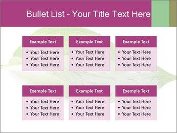 0000083778 PowerPoint Templates - Slide 56