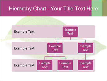 0000083778 PowerPoint Templates - Slide 67