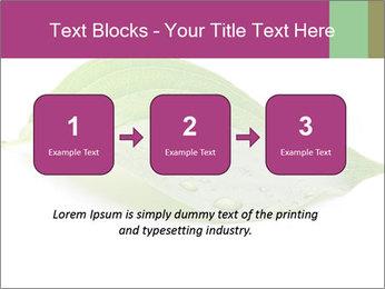 0000083778 PowerPoint Templates - Slide 71
