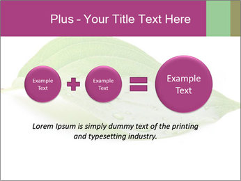 0000083778 PowerPoint Template - Slide 75