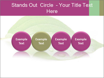0000083778 PowerPoint Template - Slide 76