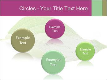 0000083778 PowerPoint Templates - Slide 77