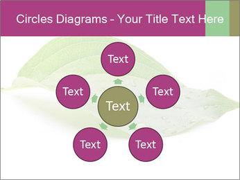 0000083778 PowerPoint Templates - Slide 78
