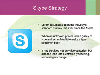 0000083778 PowerPoint Template - Slide 8