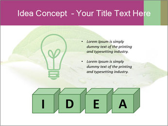 0000083778 PowerPoint Template - Slide 80