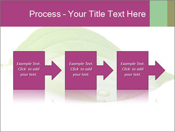 0000083778 PowerPoint Template - Slide 88