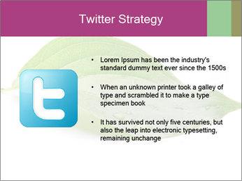 0000083778 PowerPoint Templates - Slide 9