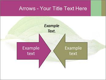 0000083778 PowerPoint Templates - Slide 90