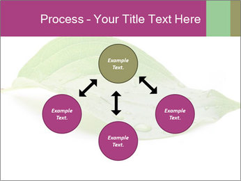 0000083778 PowerPoint Template - Slide 91