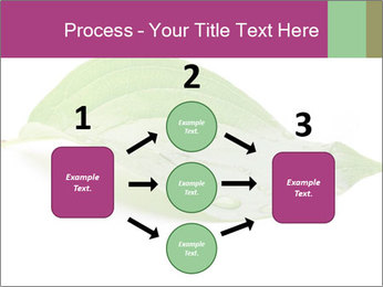 0000083778 PowerPoint Template - Slide 92
