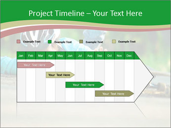0000083784 PowerPoint Template - Slide 25