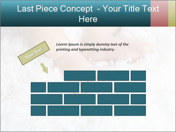 0000083790 PowerPoint Template - Slide 46