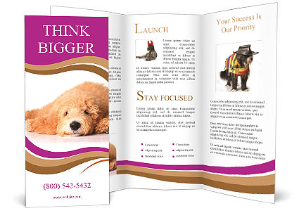 0000083795 Brochure Template