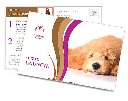 0000083795 Postcard Templates