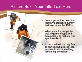 0000083795 PowerPoint Template - Slide 17