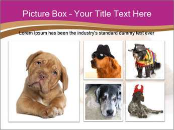 0000083795 PowerPoint Template - Slide 19