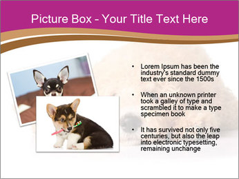 0000083795 PowerPoint Template - Slide 20